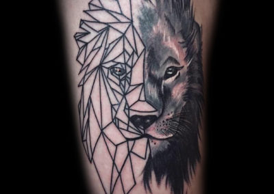 lion realistic, geometric
